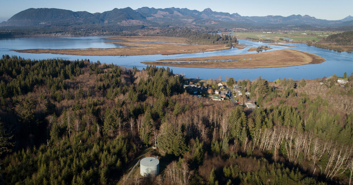 Timber Tax Cuts Cost Oregon Towns Billions. Then Polluted Water Drove Up the Price.