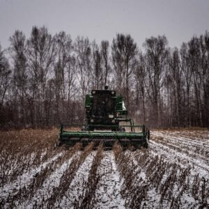 A soybean field in Russia's remote Far East being harvested.