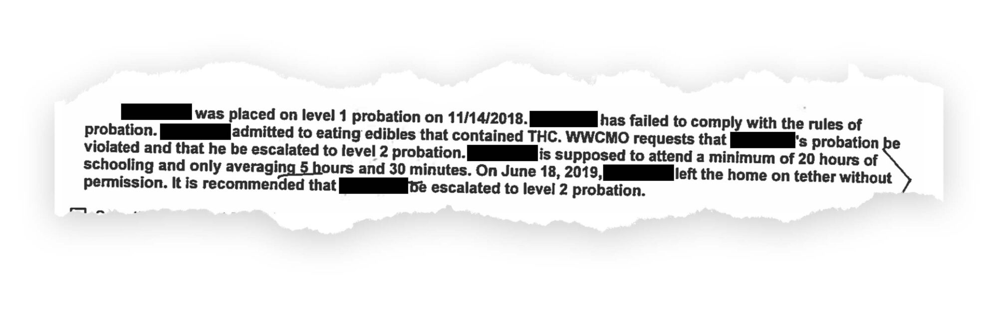 Probation document excerpt, with names redacted.