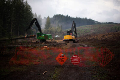 20200730-may-2018-email THE CUTTING: What Happened When a Public Institute Became a De Facto Lobbying Arm of the Timber Industry Business Environment Featured Top Stories U.S. [your]NEWS